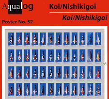 AQUALOG Poster Fascinating KOI, LAMINATED