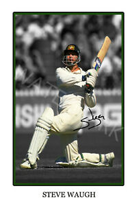 Steve Waugh large signed 12x18 inch Cricket photograph poster - Top Quality