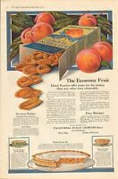 1919 VINTAGE MAGAZINE AD #899 - CALIFORNIA BLUE RIBBON PEACHES - PEACH GROWERS