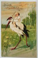 Congratulations Baby Riding Stork 1907 Embossed to Peruville Postcard M13