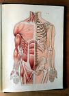 LAROUSSE MEDICAL ILLUSTRE Dr Galtier Boissière 1912 VINTAGE Medical Dictionary