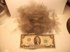 Cdc Feather :Color ; {Grey Dun } 1 gram