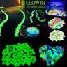100pcs Glow in The Dark Stones FISH TANK AQUARIUM Pebbles Rock Garden Road asd
