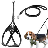 Step-in Dog Harness and Leads Leash Soft PU Leather for Small Medium Dogs Puppy