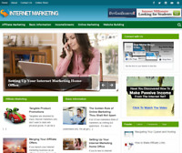 Internet Marketing Tips PLR Niche Blog Wordpress Ready Made Website