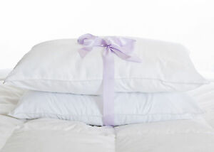 Ultra Soft Microfibre Luxury Pillow PAIR Anti Allergenic Feels Just Like Down