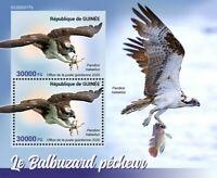 Guinea Birds of Prey on Stamps 2020 MNH Osprey Fish Hawks Raptors 2v S/S + IMPF