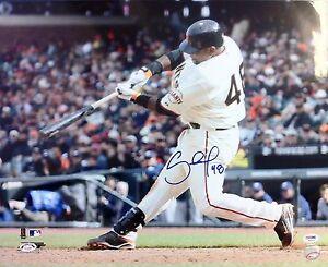SF Giants Pablo Sandoval signed 16x20 photo - PSA Auth -W/S MVP