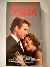 Splendor in the Grass ~ Natalie Wood Warren Beatty *VHS* Elia Kazan Director