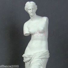 "11.4""(29cm) VENUS Model Figure Art Decoration  Resin Statue Sculpture"