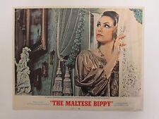 "THE MALTESE BIPPY 1969 Lobby Card 11x14"" Horror Movie Poster Julie Newmar / MGM"