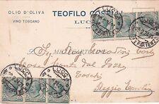 LUCCA - Teofilo Coselli - Olio d'oliva 1924