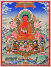 "Thangka Amitabha ""Best calidad de impresión"" Buda nepal Lotus familia Dewachen t04"