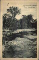 Owen Sound Ontario Harrison Park c1920s Postcard