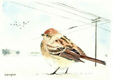 Winter sparrow 5 x 7 inches Art print of original watercolor by Anna Lee
