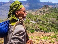 4 lbs Yemen Mocha Sanani MATARI Un-roasted Green Coffee Bean New In Fast Ship