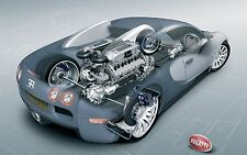 Bugatti Veyron (Blueprint) 24 x 36 Poster