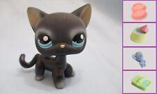 Littlest Pet Shop Cat Shorthair Siamese 994 Free Accessory Authentic US Seller