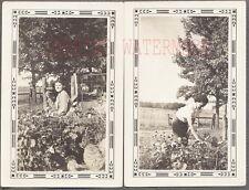 Vintage 1937 Photos Pretty Girls in Vegetable Garden Ontario Canada 691335