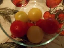 "Dr. Carolyn Heirloom Tomato Seeds ""Plus 20 Red Cherry & Peppers Seeds"