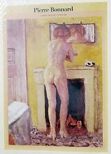 (PRL) 1987 PIERRE BONNARD VINTAGE AFFICHE ART PRINT ARTE POSTER ILLUSTRAZ.
