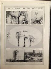 WW1 AEROPLANE CRASH FRANCE MILITARY WAR PLANE  ANTIQUE PRINT 1915