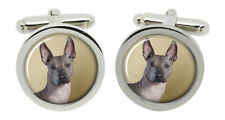 Mexican Hairless Dog Cufflinks in Chrome Box
