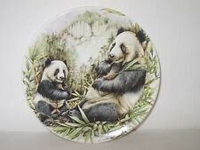 "PANDAS EATING BAMBOO POOLE POTTERY ENGLAND DECORATIVE PLATE 6"""