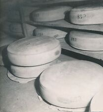 CAVE À FROMAGE c. 1950 - Meules de Gruyère  Jura  - DIV8916