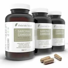 Pure Garcinia Cambogia With Energy From Yerba Mate. Weight Loss And Diet Pill