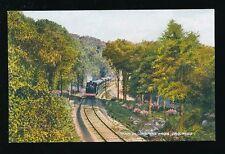 Dorset LYME REGIS Train in Combpyne Woods c1920/30s? PPC Valentine Valcolour