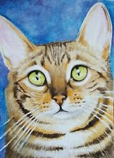 ACEO Original Art Card Striped Cat Very Detailed Realistic Watercolor Free Ship