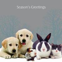 Family Christmas Labrador Rabbit Cat Guinea Pig 10 pk Small Cards CLEARANCE SALE