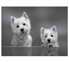 5D Diamond Painting Westie Dogs Rhinestone Cross Stitch Embroidery Home Decors