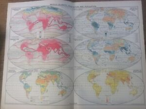 Vintage Antique 1939 Philips Map 20x15 World Climate Vegetation & Population