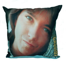 David Bruce Cassidy Commemorative - 1950 - 2017 Cushion Cover & Filler
