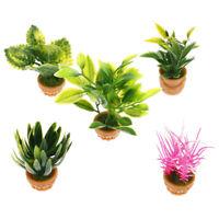 1Pc 1:12 Dollhouse Scene Model Miniature Ornament Mini Potted Plant FlowersDec X