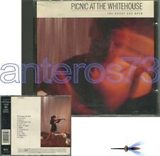 """PICNIC AT THE WHITEHOUSE """"THE DOORS ARE OPEN"""" RARE CD 1986"""