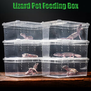 Clear Breeding Box Feeding Reptile Transport Gecko Lizard Spider  Insect Cage