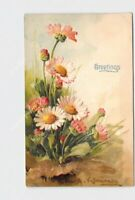 PPC POSTCARD C KLEIN ARTIST PINK DAISES EMBOSSED GREETINGS