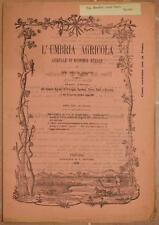 L'UMBRIA AGRICOLA 15 30 NOVEMBRE 1890 CANAPA HEMP DISTILLAZIONE CASTAGNE VINO