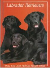 Labrador Retrievers - Three Color Pull-Out Posters Inside - PB - TFH