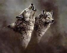 """Jorge Mayol """" Wolf Song """" # 766/1200  Paper S/N W/CERT $400 Value Wolf"""