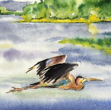 Great Blue Heron 8X10 Watercolor Best Beach Decor art print picture Barry Singer