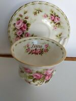 Royal Albert Flower Of The Month Series June Roses Bone China Cup & Saucer