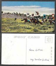 Old Postcard - Tibet, China - Horse Festival