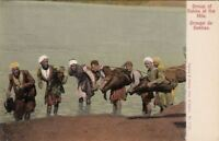 Postcard Egypt Group of Sakka at the Nile