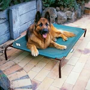 Coolaroo Dog Raised Dog Beds Green