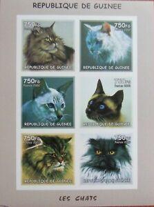 R.GUINEE-CATS-2002-1 M/Sh.Imperf. MNH**,RG 2