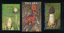 Pilze, 3 Motiv-Blöcke Pilze aus Guayna, postfrisch,  (MO3)